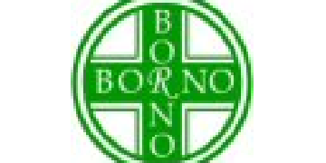 Borno Chemists Ltd logo